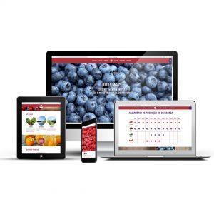Beirabaga Website - Devices