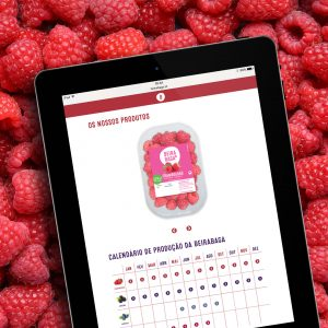 Beirabaga Website - Tablet